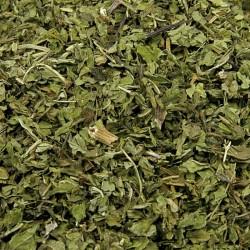 Groene munt bladeren gesneden