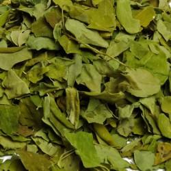 Moringa bladeren BIO heel