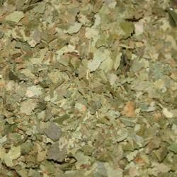 Berkenbladeren gesneden