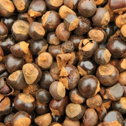 Guarana zaden heel