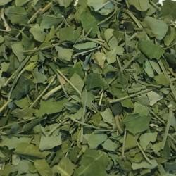 Stevia bladeren gesneden