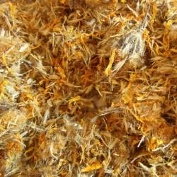 Arnica montana bloemen heel